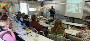 Sharon May-Davis - Whole Horse Dissection 1 @ AMT Equestrian